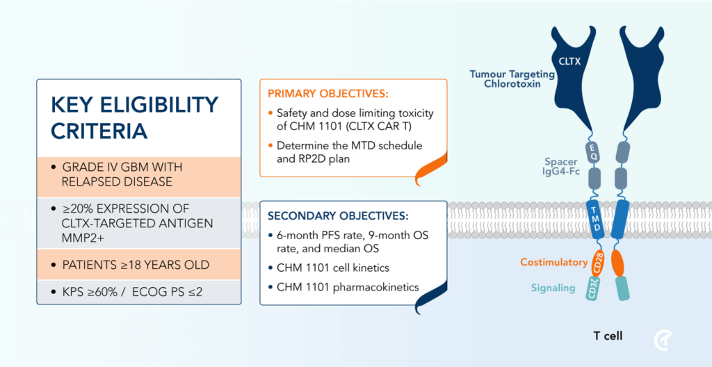 CHM 1101 Phase 1 Clinical Trial